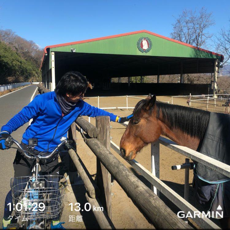 前橋市の馬と戯れる接骨院