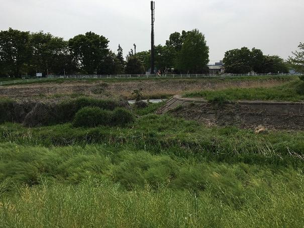 交通事故治療 前橋 (11)