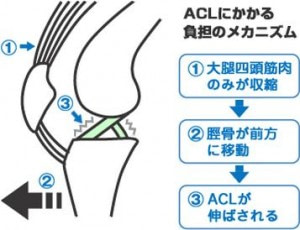 交通事故治療 (2)