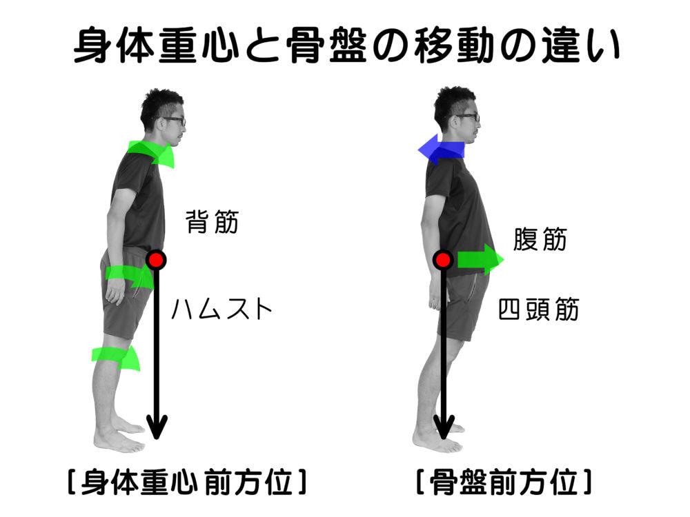 重心と筋肉