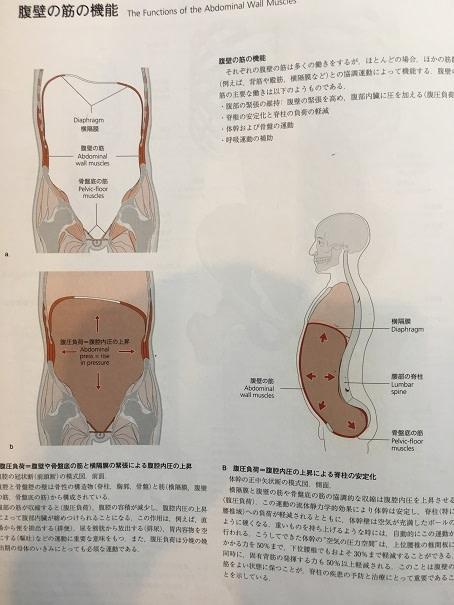交通事故治療 前橋 (3)