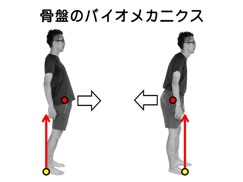 ひかり接骨院での足からの骨盤調整