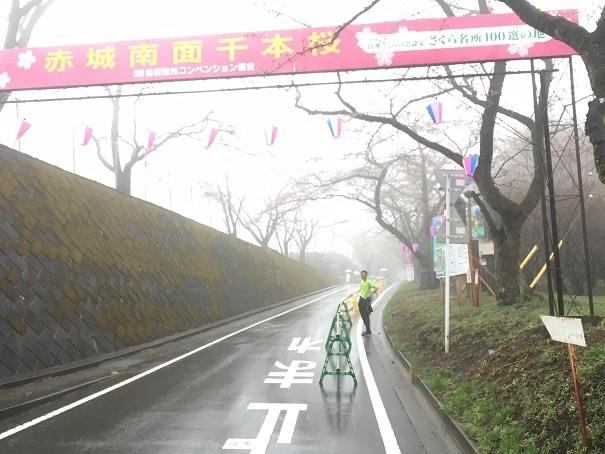 交通事故 前橋 整形外科 (9)
